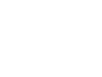 BULLFINCH_Logo_Wht-02
